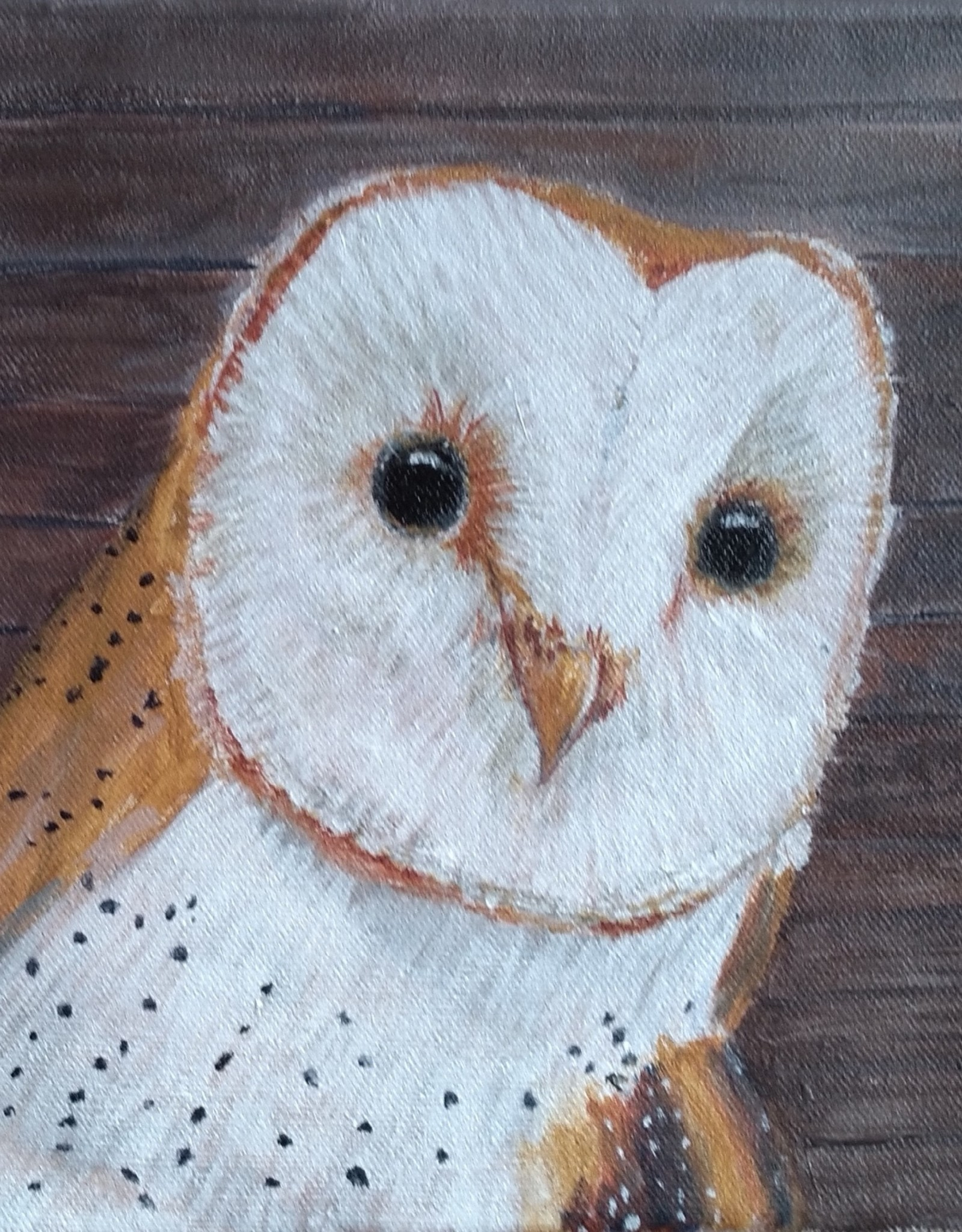 Jim G Acrylic Art Class Barn Owl Sat March 13 10:00 am to 12:30 pm
