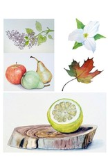 Tamara S Watercolour Art Class  Level One Tues Mar 9 to Tues March 30 11:00 am to 1:00 pm