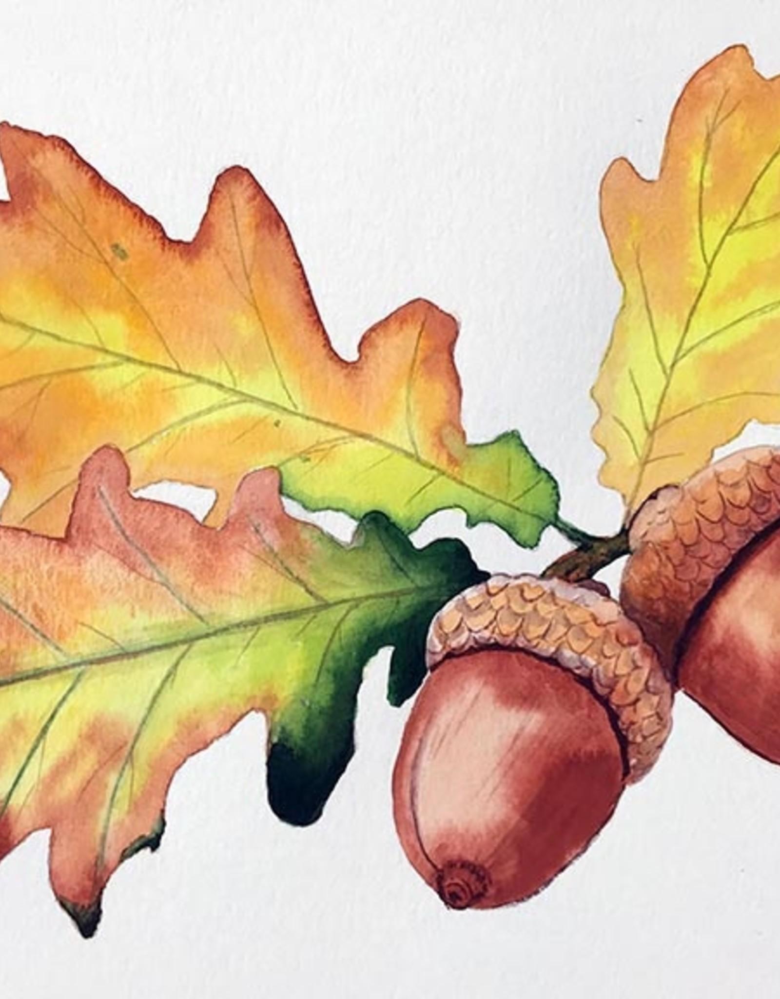 Tamara S Watercolour Art Class Acorns & Leaves Tues Sep 7 11am to 1pm