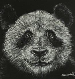 Jade W Conte  Art Class Beginners Level One Panda Bear Tues Aug 3 & Wed Aug 4  6:00-8:00 pm