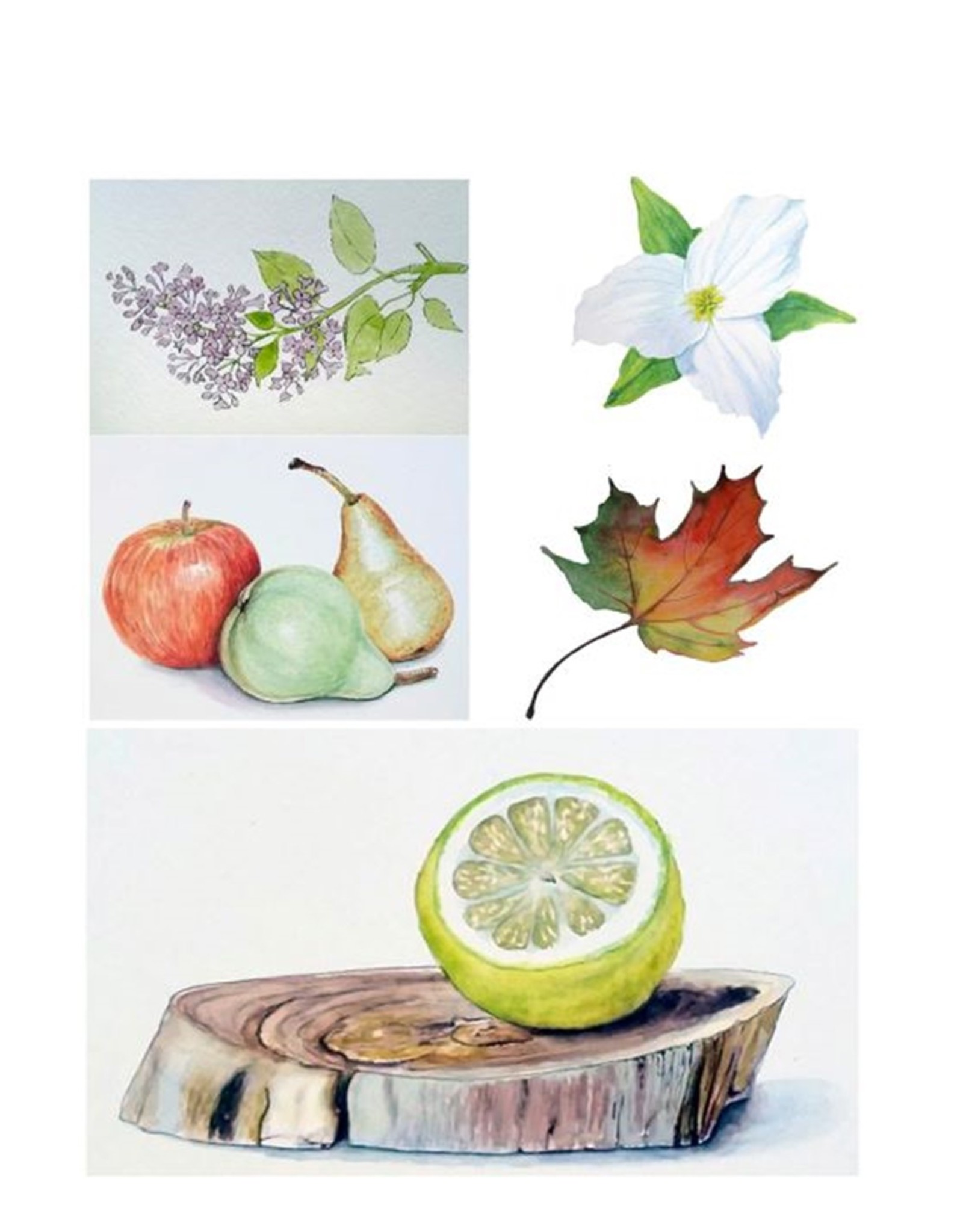 Tamara S Watercolour Level 1 Art Class Tues Oct 5 to Tues Oct 26 1:00 to 3:00 pm