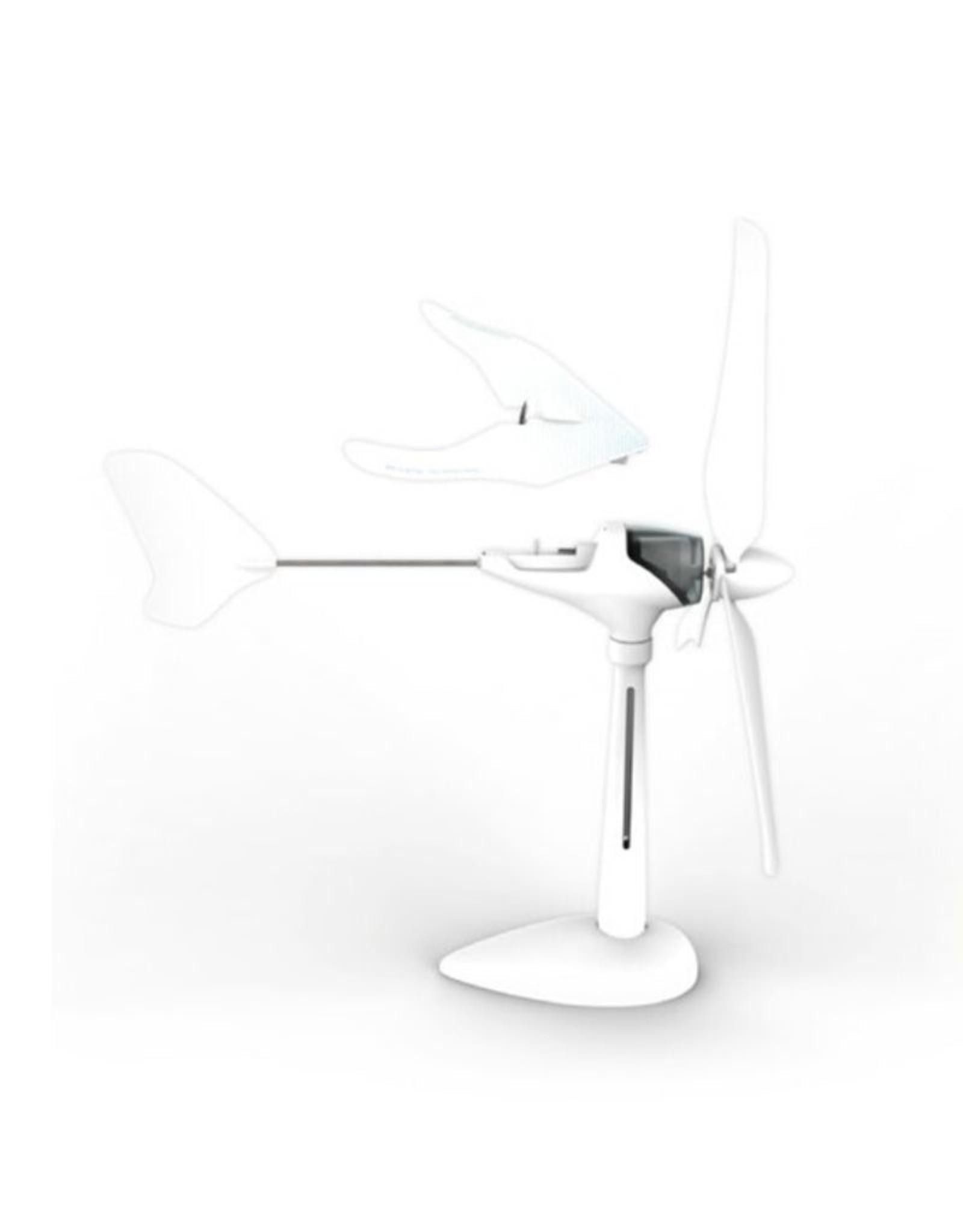 Wind motor glider
