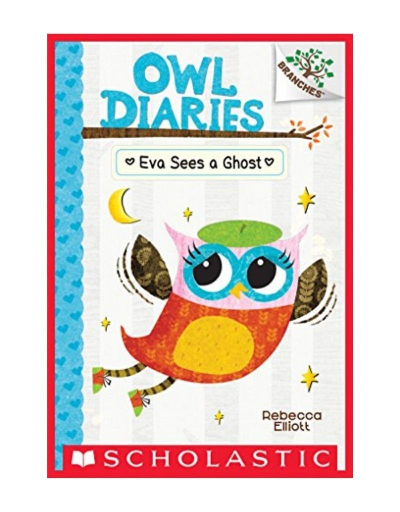 Owl Diaries #2