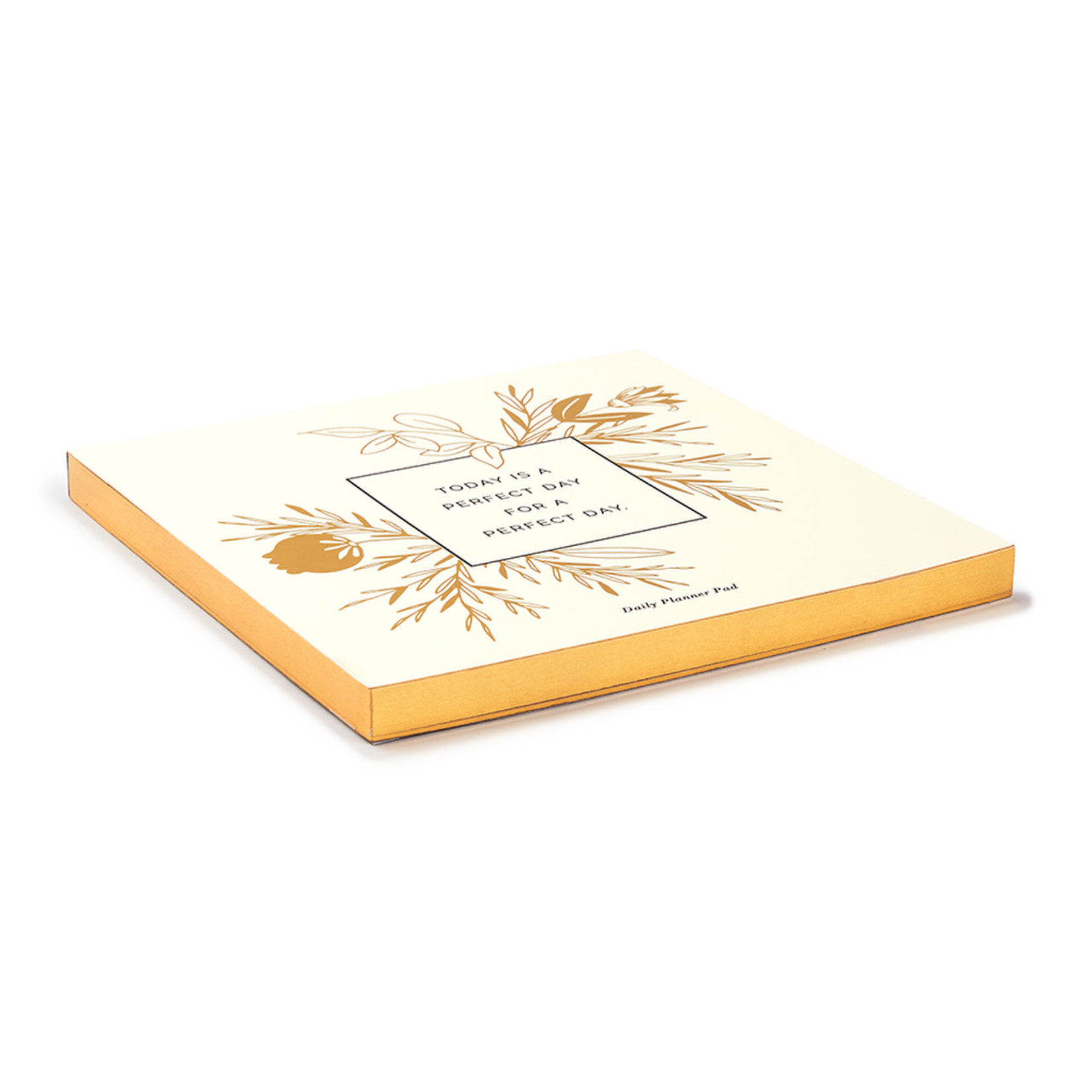 COMPENDIUM Today Is A Perfect Day For A Perfect Day Daily Planner Pad