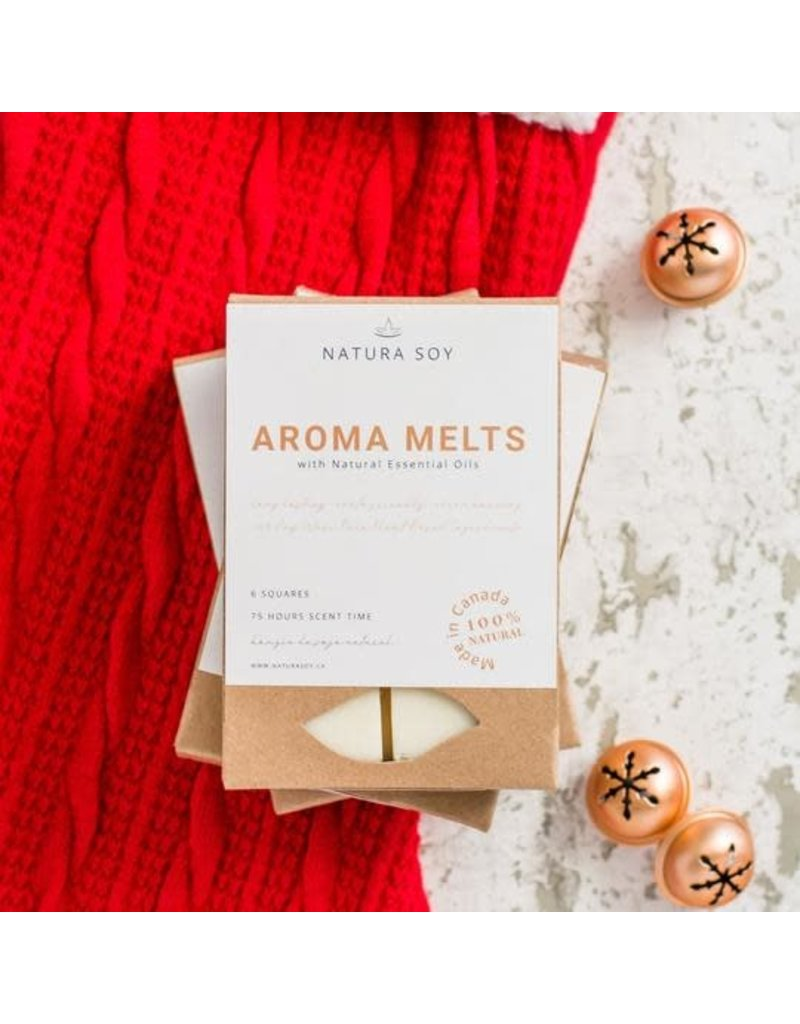HOLIDAY AROMA MELTS