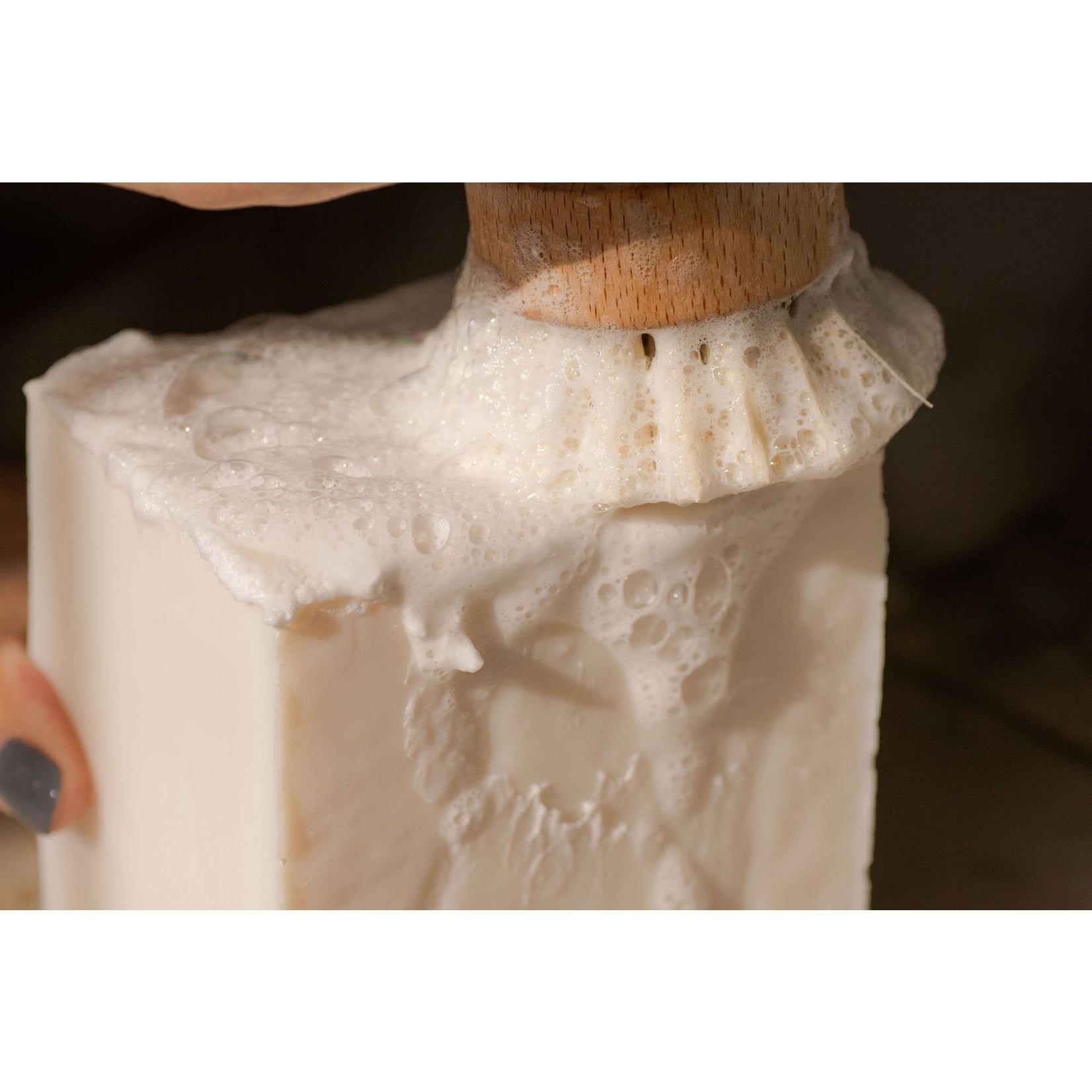 NO TOX LIFE CASA AGAVE™ DISHWASHING HAND BRUSH
