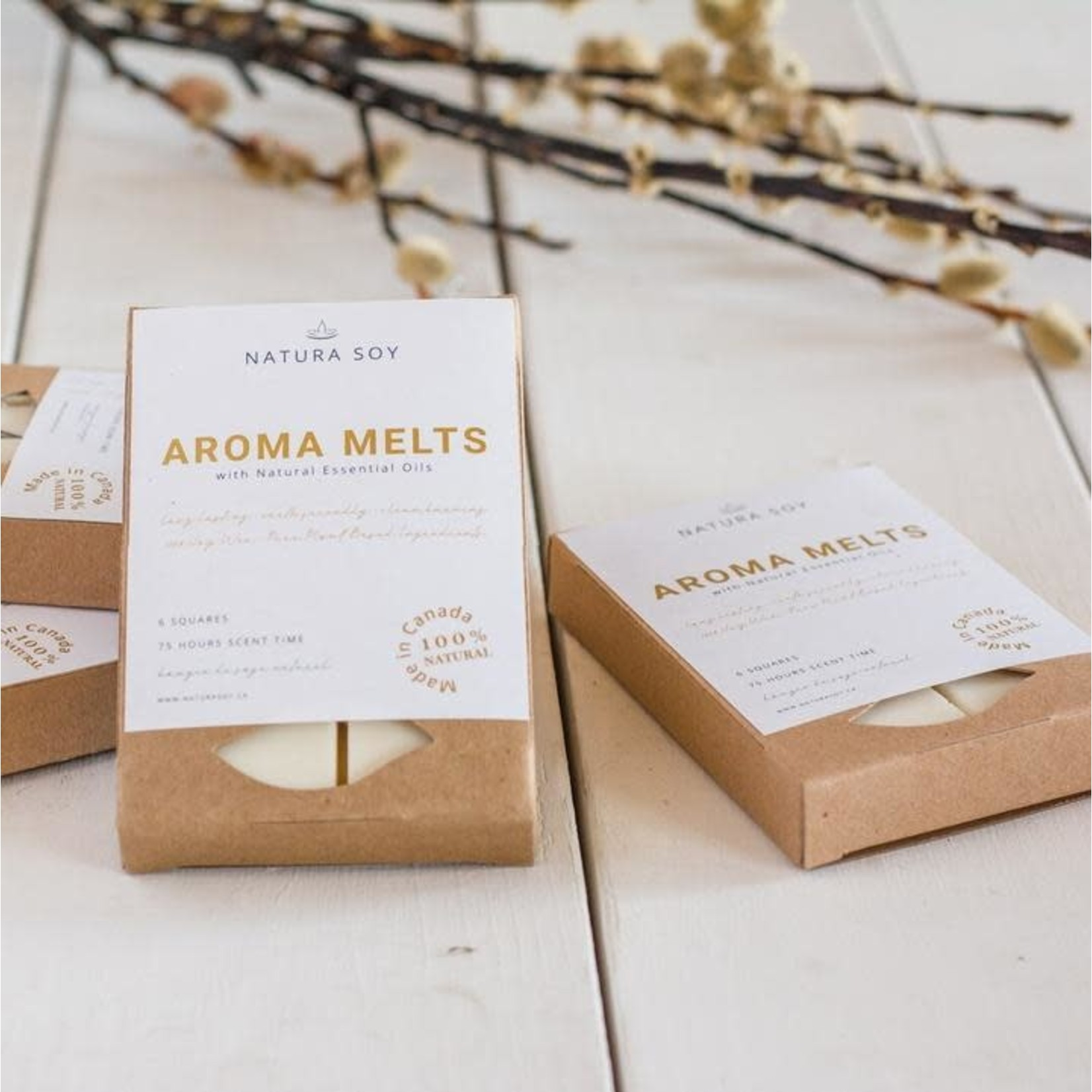 NATURA SOY Aroma Melts Vanilla Maple Latte