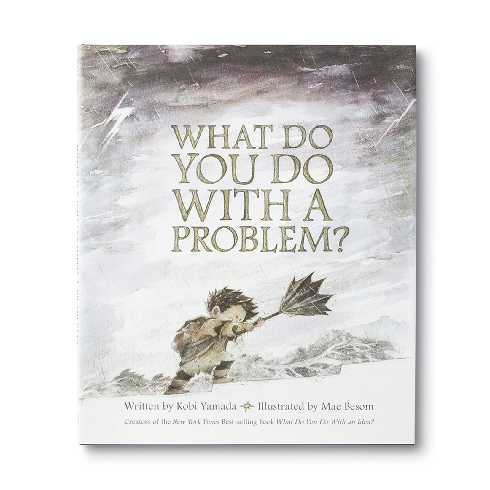 ILLUSTRATED BOOK - WHAT DO YOU DO WITH A PROBLEM