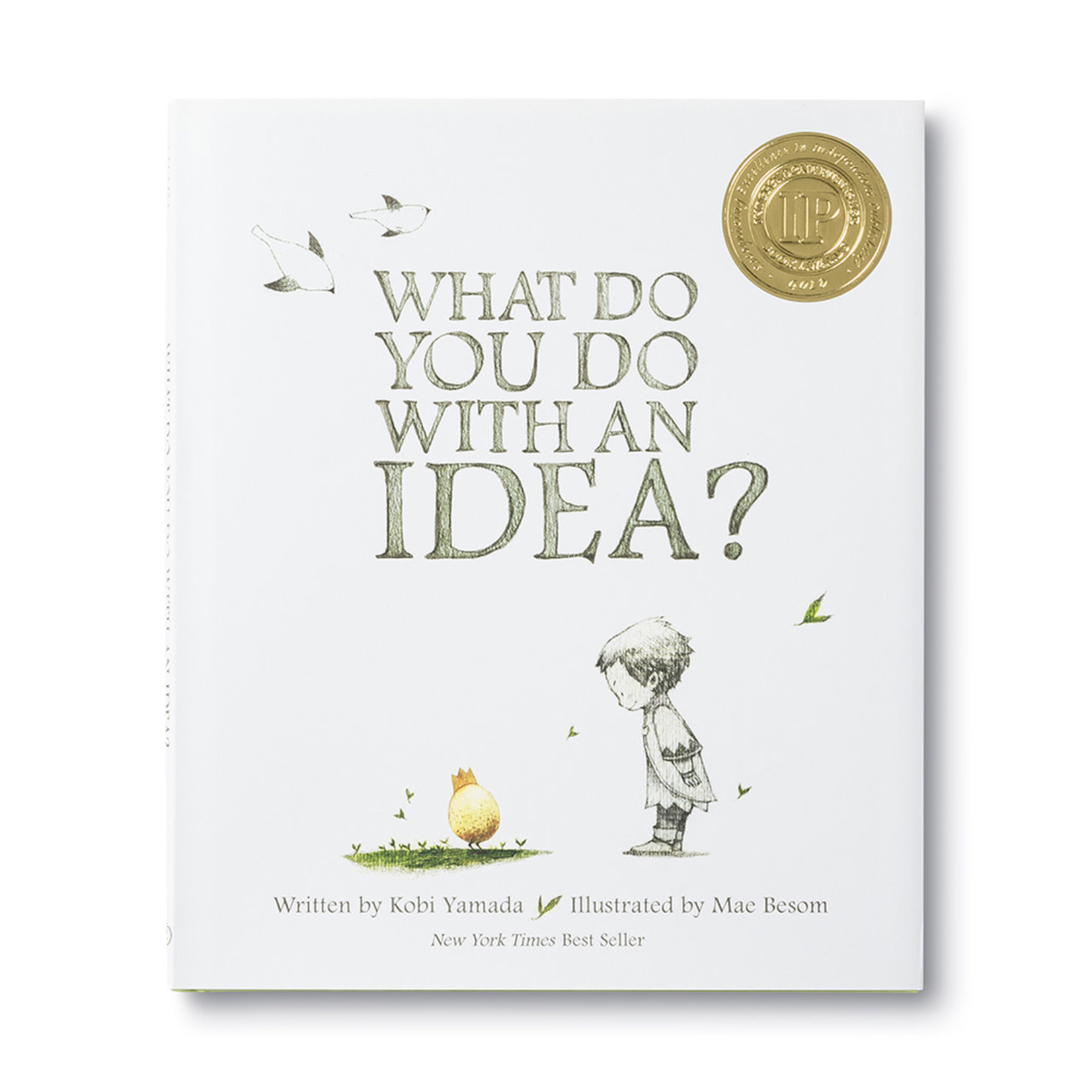 ILLUSTRATED BOOK - WHAT DO YOU DO WITH AN IDEA