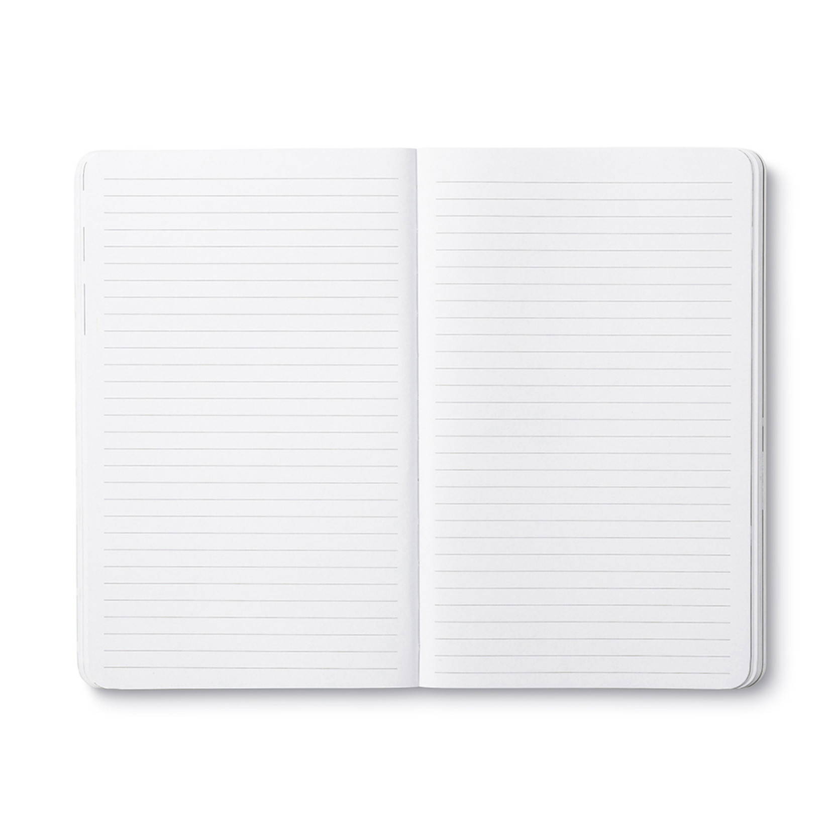COMPENDIUM WRITE NOW JOURNAL - DREAM BIG AND DARE TO FAIL