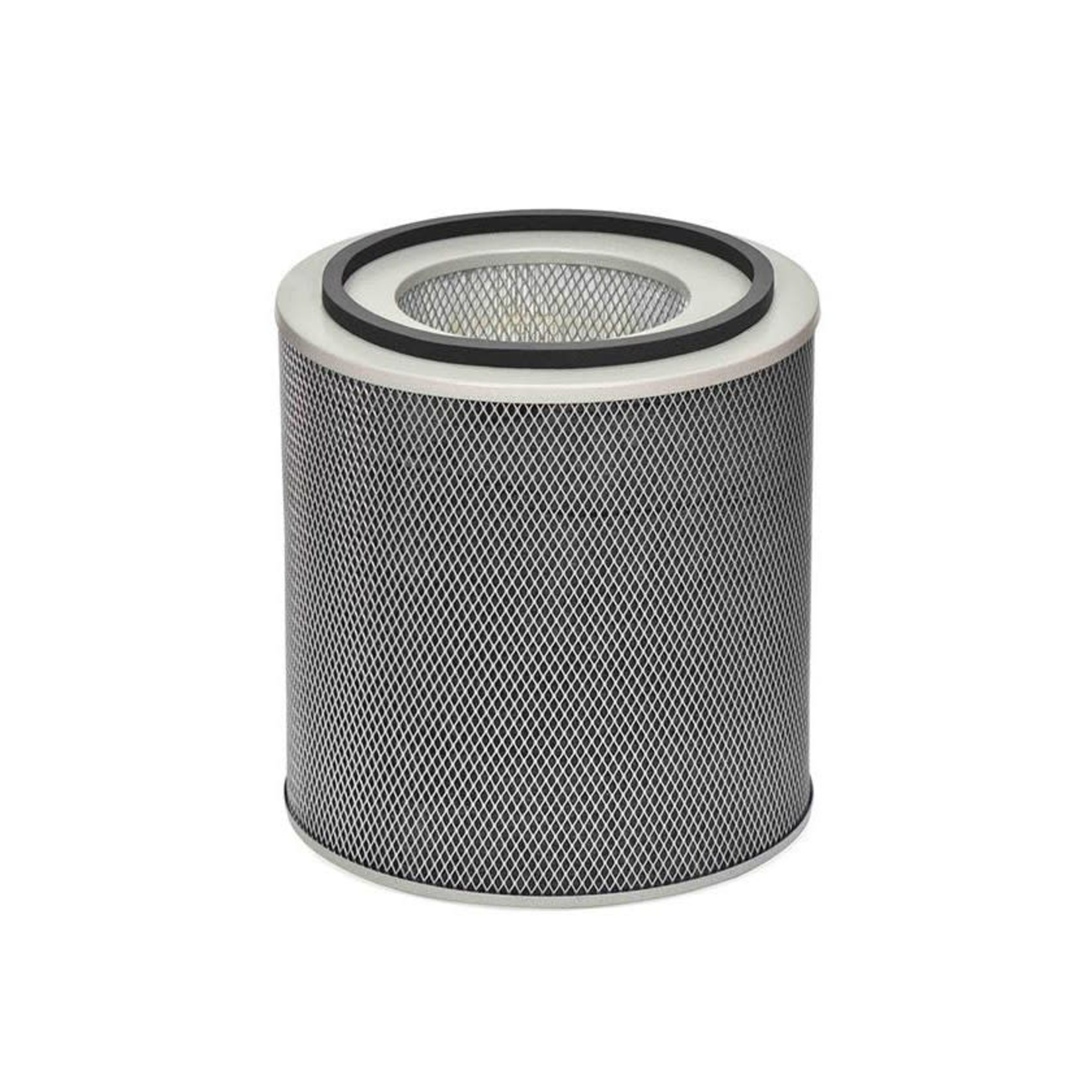 AUSTIN AIR HEALTHMATE HM400 REPLACEMENT FILTER