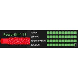 Ashaway PowerKill 17g 1.25