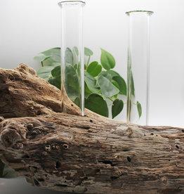 Quinn Harmon Tube Driftwood Vase
