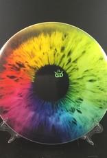Dynamic Discs Dynamic Discs Verdict
