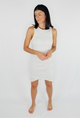 BB Dakota Curve Warning  Dress