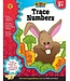 Big Skills for Little Hands: Trace Numbers (Ages 3+) Book