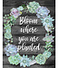 Bloom Where You Are Planted Chart
