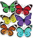 Butterflies Colorful Cut-Outs® (Assorted)