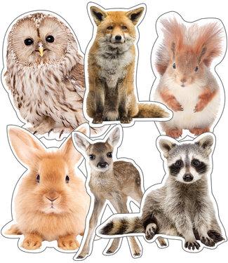 Carson Dellosa WOODLAND WHIMSY ANIMALS