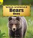 Wild Animals Bears (English and Spanish Edition)
