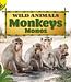 Monkeys: Monos (Spanish) Board book