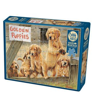 Cobble Hill Golden Puppies