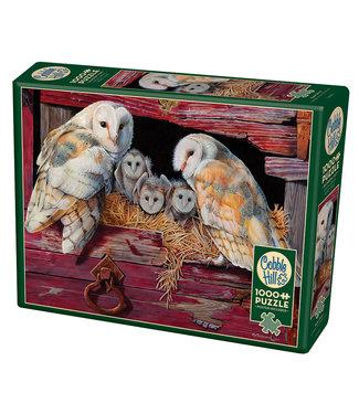 Cobble Hill Barn Owls