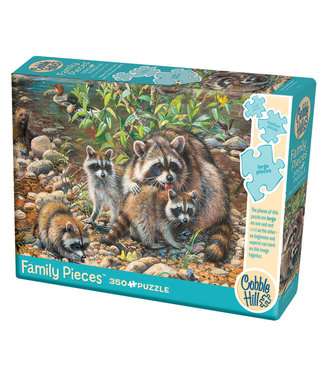 Cobble Hill Raccoon Family (Family)