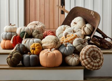 Fall Gifts & Decor