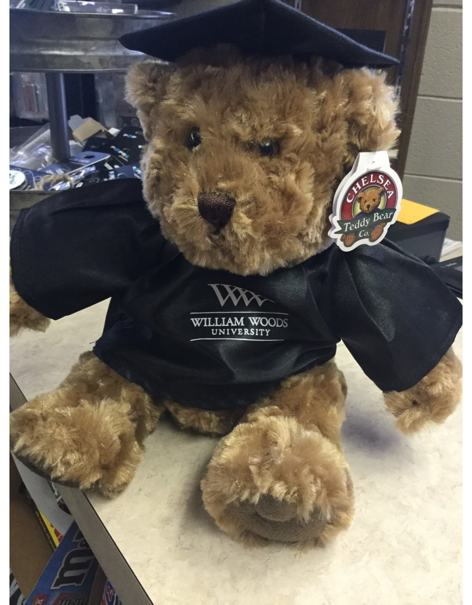 Bear w/Black Cap & Gown