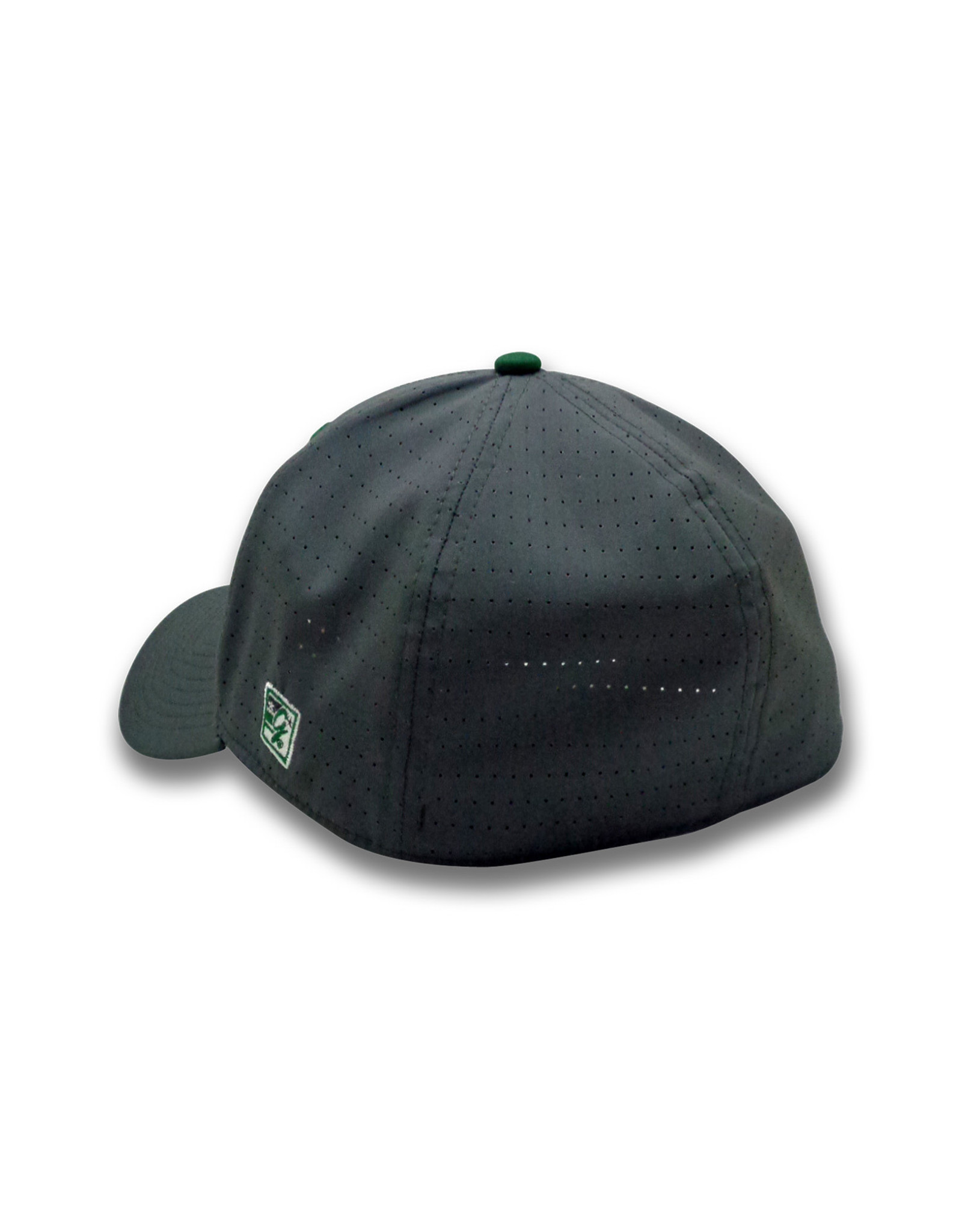 Graphite Hat w/Forest Button