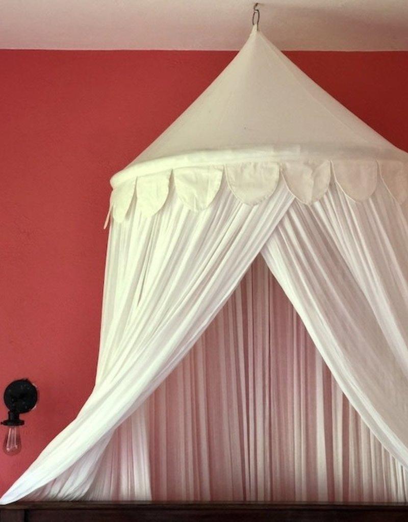 royal canopy