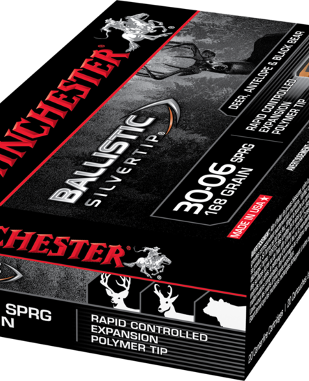 Ballistic Silvertip 30-06, 168gr (20pk)