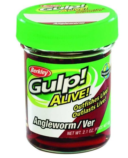 "Gulp Alive Angle Worms 1"", Natural (2.1oz Jar)"