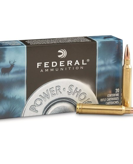 Power Shok .300 Win Mag 150gr Jacketed SP (20 pk)