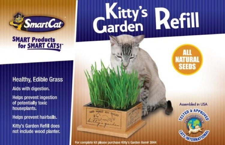Smart Cat Pioneer Pet Smart Cat Kitty Garden Refill