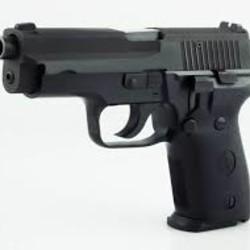 Norinco NP34 9mm Sig 228 Clone