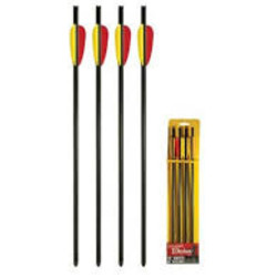 """Daisy 16"""" Target Bolts 4ct Youth"""
