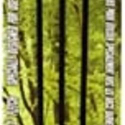"Junior Archery Arrows 28"" Fiberglass 3 Pack"