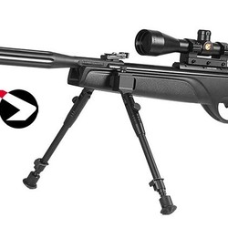 Gamo Rifle HPA M1 .177 1266 FPS with 3-9x40WR Scope & Bipod