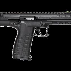 .22 LR Semi-Auto Pistol