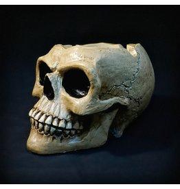 """Skull Ashtray - 3"""" Tall"""