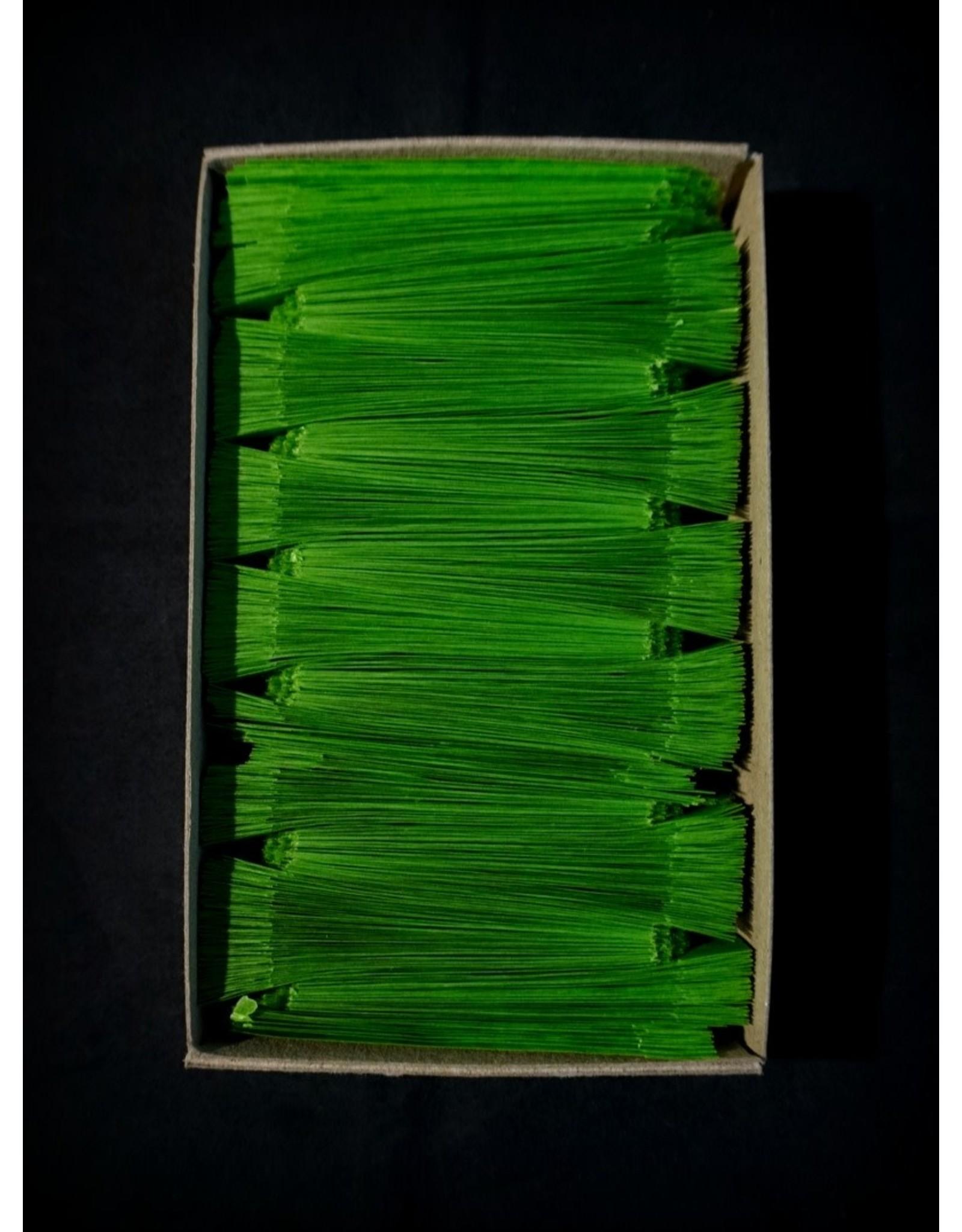 Medium Green Box