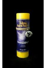 Animal Spirit Guide Pewter Pendant Candle - Hummingbird