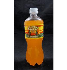 Cactus Cooler Bottle Rare American