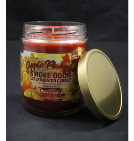 Smoke Odor Smoke Odor Candle - Apple Pumpkin