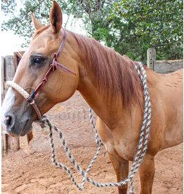 Breaking Rawhide Hackamore Set  Horse Hair Reins