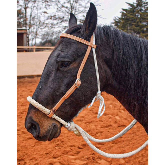 Heavy Duty Rawhide Bosal  Western Horse Breaking Training Hackamore