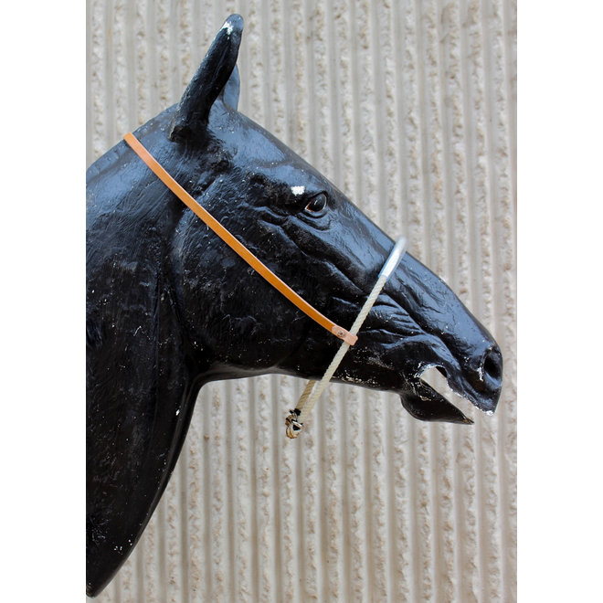 Rope Western Noseband With Plastic Tubing Headstall