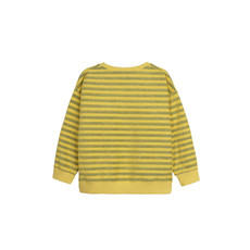 Barn of Monkeys Music band Printed Stripes sweatshirt